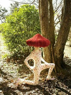 33 ideas summer camping ideas for teens Halloween Kostüm, Halloween Costumes, Whimsical Halloween, Charles Freger, Camping Style, Camping Theme, Beach Camping, Family Camping, Dibujos Cute