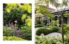 A Native Garden Made With Recycled Renovation Debris Australian Architecture, Australian Homes, Kennedy Nolan, Macedon Ranges, Timber Cladding, Most Beautiful Gardens, Architecture Awards, Victorian Terrace, Garden Studio