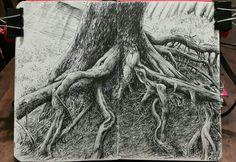 Tree roots. Lidia Barragán. #moleskine #sketch #tree #arbol @lidiaabarragan