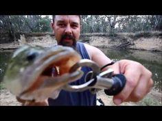 bait fishing for murray cod - YouTube