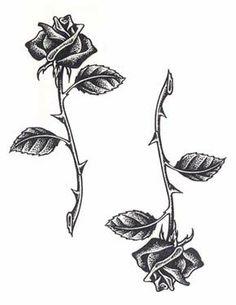 black #roses white thorns