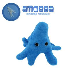 giant microbes | Giant Microbes Amoeba (Amoeba proteus) Stuffed Plush Toy, Fun & Unique ...