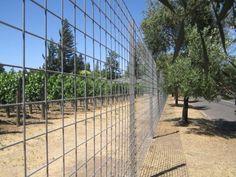 Bougainvillea Trellis Fence