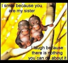 Sent to me from my much loved little brother :)