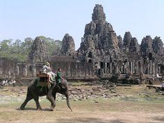 Globe Aware Volunteer Vacations  Cambodia  Elephant tour