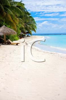 iCLIPART - Royalty Free Photo of a Beach Scene