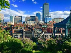 Boston, summer from the rooftops