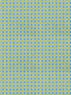 Stroheim Lester Lanin-Turquoise Lime by Dana Gibson 4702505 Luxury Decor Fabric