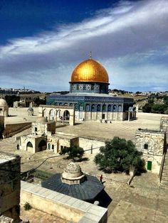 The Beautiful Rock of the Dome - Palestine