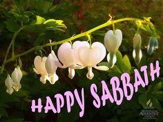 Sabbath Rest, Happy Sabbath, Sabbath Day, Scripture Verses, Jesus Christ, Sayings, Style, Shabbat Shalom, Happy Saturday
