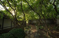 Exiting the Tea Garden.