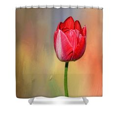 Red Tulip at Sunset by Kaye Menner Shower Curtain