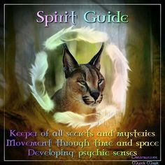 Animal Spirit guide card also known as a medicine card~ Spirit Animal Totem, Animal Spirit Guides, Animal Totems, Native American Prayers, Native American Spirituality, Zen Pictures, Animal Reiki, Fairy Dust, Magick
