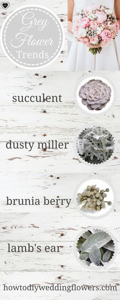 Grey wedding trends bouquets Grey silver flowers bouquets weddings ideas how to make bouquet succulent gray