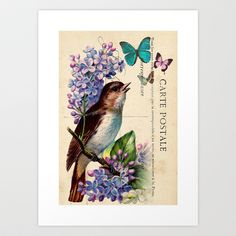 Bird and Butterflies on Vintage Postcard Ephemera Home Décor Original Design by Adidit  Art Print by Adidit - $20.80