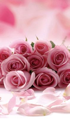 """""""Pink roses are cute but not as love bonded between you and me, for all those precious years. Love Rose, My Flower, Pretty Flowers, Pretty In Pink, Romantic Roses, Beautiful Roses, Flower Wallpaper, Iphone Wallpaper, Pink Roses"""