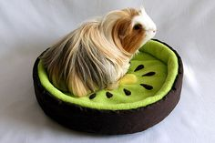 cosy cuddle bed orange for guinea pigs by TheCosyHut on Etsy