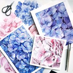 hydrangea flower hydrangea pattern watercolor