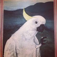 Parrot, Bird, Pictures, Animals, Parrot Bird, Photos, Animais, Animales, Animaux