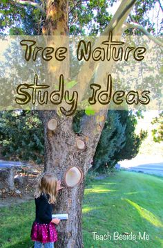 This past month our preschool and grade science we have been doing a tree nature study. My two younger kids have been having a lot of fun learning about trees and I wanted to Forest School Activities, Nature Activities, Science Activities, Preschool Science, Science Projects, Art Projects, Project Ideas, Teaching Science, Science For Kids
