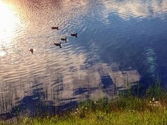 Lake Keselmä at Sallatunturi. | Flickr - Photo Sharing!