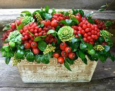 Výsledek obrázku pro podzimní aranžmá Christmas Time, Christmas Ideas, Floral Arrangements, Fall Decor, Succulents, December, Strawberry, Bouquet, Autumn