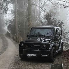 "Mercedes-Benz's G-Seires, ""Welcome To The Jungle"" of Fun & Games"