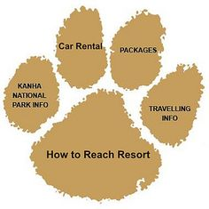 United 21 Wildlife Resort offers Hospitality Services in Kanha, located in Madhya Pradesh, India a well known Place for Tiger Habitat. For Hotel Booking Visit Today. Tiger Habitat, Jungle Resort, Tiger Skin, Trophy Hunting, Madhya Pradesh, Hospitality, Tigers, Habitats, National Parks