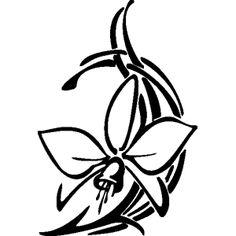 orchidee.jpg (300×300)