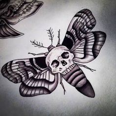 Skull moth tattoo