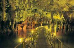 Το σπήλαιο πηγών Αγγίτη (Δράμα, Μακεδονία) είναι ένα από τα μεγαλύτερα ποτάμια σπήλαια του κόσμου (με μήκος 21 χιλιόμετρα) και βρίσκεται κοντά στην Προσοτσάνη του νομού Δράμας. Η ιδιαιτερότητα του έγκειται στο γεγονός ότι στο δάπεδό του κυλάει ο ποταμός Αγγίτης. Ο πλούσιος διάκοσμός του περιλαμβάνει τεράστιους σταλακτίτες. Το σπήλαιο είναι επισκέψιμο σε μήκος 500 μέτρων ενώ …