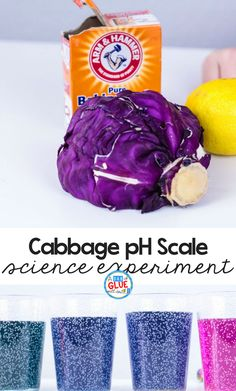 Looking to add an easy hands-on science activity? Try out this cabbage pH science experiment. #science #STEM