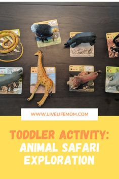 This easy activity will give your kids the opportunity to learn about a variety of animals. Turn them into exploresr with this safari toddler activity! Wildlife Safari, Safari Animals, Safari Theme, Jungle Theme, Infant Activities, Family Activities, Home Daycare, Busy Bags, Animal Cards