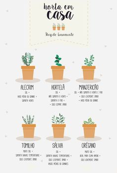 Mini horta em casa | http://www.blogdocasamento.com.br