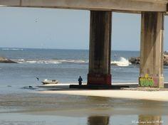 Sabes nadar? Barra da Tijuca, Rio de Janeiro, Brasil.   Fotografia de ArtCunha Artesanato em Gesso  24451929 RJ   Olhares.com   #RioDeJaneiro #Rio #Brasil #Brazil #BarraDaTijuca #Praia