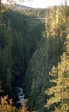 High Steel Bridge on the South Fork Skokomish