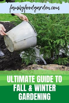 Do you want to know the ultimate guide to fall and winter gardening? Fall & winter gardening is becoming more popular & if you haven't tried it yet you should! Check this pin for more details! #fallgardening #wintergardening #gardening Healthy Fruits And Vegetables, Organic Vegetables, Container Gardening, Gardening Tips, Kitchen Gardening, Vegetable Gardening, Lost Garden, Survival Life Hacks, Greenhouse Growing