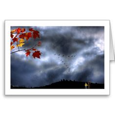 """Children watch flock of geese fly past on autumn day   Mindscapes The Images of Wayne D. King PO Box 500 Rumney, NH 03266 waynedking.redbubble.com """"Moments of Wonder"""""""
