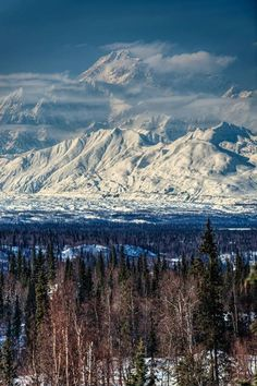 Thank you Dirk Westfall Photography for capturing Denali, North America's tallest peak, in all her glory!