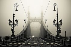 A bridge in Budapest. It has a sort of surreal feeling all over it
