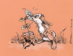 1986-03-19_rabbit.jpg 570×442 pixels