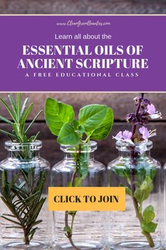 Essential Oils of the Bible Essential Oils For Pregnancy, Essential Oils For Babies, Essential Oils For Anxiety, Therapeutic Essential Oils, Essential Oils Cleaning, Essential Oil Starter Kit, Essential Oil Carrier Oils, Essential Oil Diffuser Blends, Essential Oil Uses