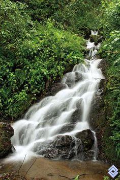 Reserva de Aguas de Manizales, Colombia