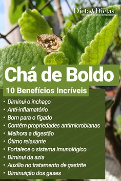 Ayurvedic Plants, Herbalife Shake Recipes, Bebidas Detox, Abs Workout For Women, Happy Foods, Green Life, Natural Life, Medicinal Plants, Health Benefits