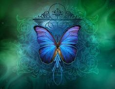 Archangel Gabriel ~ Removing Obstacles From Your Life Butterfly Kisses, Blue Butterfly, Illustrations, Illustration Art, Cool Live Wallpapers, Archangel Gabriel, Butterfly Pictures, Butterfly Wallpaper, Beautiful Butterflies