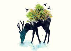 #cervo #animal #veado #planta #pássaros