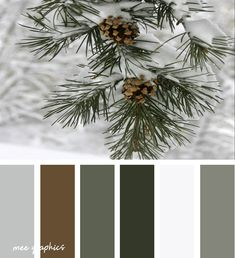 Winter Color Palettes Inspiration