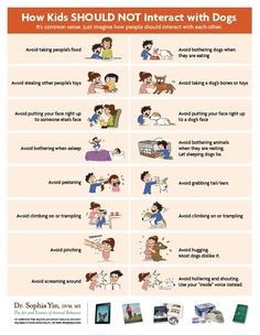 How kids should NOT interact with DOGS | Common sense is not so common. Teach kids to RESPECT ALL ANIMALS, so animals don't end up paying the price of human stupidity! ♥ Dogs ♥ Get this and more free educational posters (FREE PDF downloads) from Dr. Yin's blog right here. SHARE with parents, teachers...