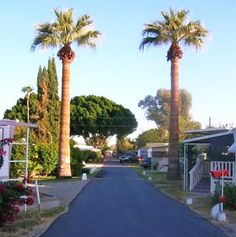 Shady Acres MH RV Park In Yuma AZ Is A Nice 55 Community