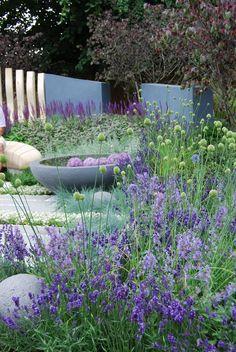 Blide blåviolette nuancer i en smuk kombination fra Hampton Court Flower Show 2015. - Fotograf: Louise Møller